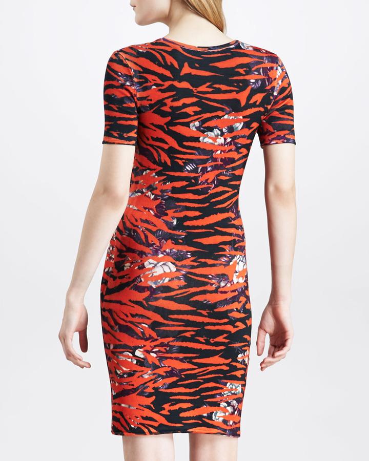 McQ Floral-Print Tiger-Striped Dress