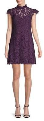 Molly Bracken Lace Sheath Dress