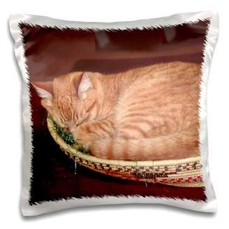 3dRose Orange tabby cat asleep in an Easter basket - NA02 CSL0214 - Charles Sleicher - Pillow Case, 16 by 16-inch