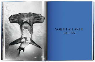 Taschen Sharks. face-to-face with the ocean's endangered predator