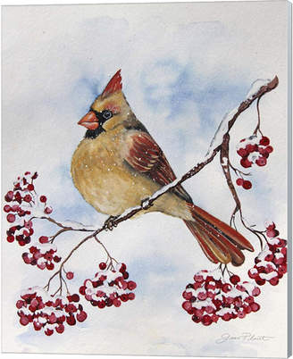 Cardinal And Winter Berries - B By Jean Plout Canvas Art