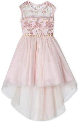 Rare Editions Little Girls Embroidered High-Low Hem Dress