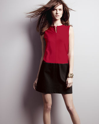Phoebe Couture Colorblock Shift Dress