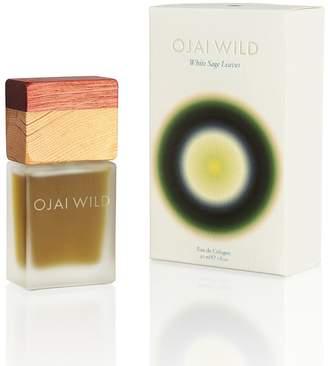 OJAI WILD - White Sage Leaves Eau de Cologne - 30 ml