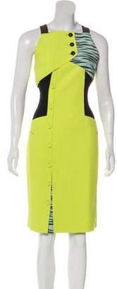 Proenza Schouler Colorblock Animal Print Dress