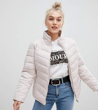 Miss Selfridge Petite padded jacket in oyster