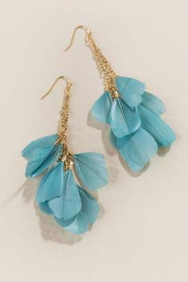 francesca's Elle Feather Earrings - Teal