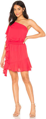 Krisa One Shoulder Ruffle Mini Dress
