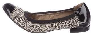 Anyi Lu Leather Ballet Flats