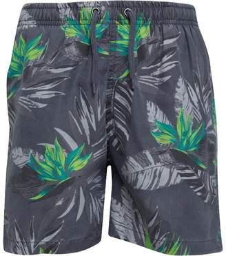87dc9caf67d81 Kangaroo Poo Boys Palm Print Swim Shorts Grey/Lime