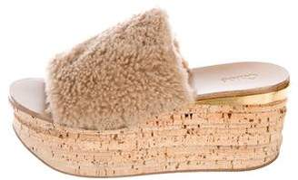Chloé Shearling Platform Sandals