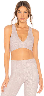 Walsh Varley Sports Bra
