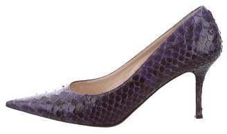 Pancaldi for Diane B Python Pointed-Toe Pumps