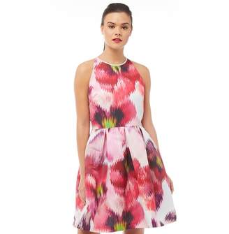 a5ea8454c Ted Baker Womens Cesilia Expressive Pansy Skater Dress Grey