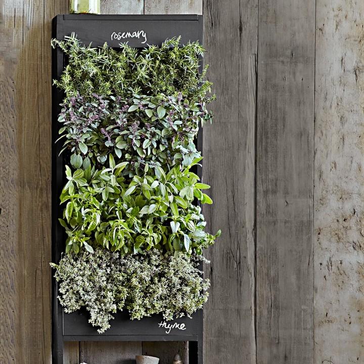 Williams-Sonoma Williams Sonoma Free Standing Vertical Chalkboard Garden