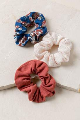 francesca s Olivia 3 Pack Scrunchie Set - Multi b82379dc044