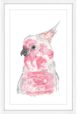 Mitchell's Marmont Hill 'Major Mitchell?S Cockatoo' by Thimble Sparrow Framed Painting Print