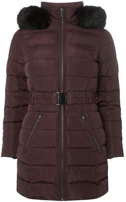 Dorothy Perkins Womens Petite Berry And Black Parka