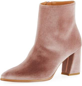 Stuart Weitzman Trendy Velvet Mid-Heel Booties
