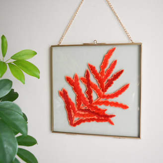 Lucy Freeman Design Red Fern Leaf Framed Embroidery Art
