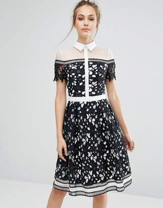 Chi Chi London Premium Lace Paneled Dress With Contrast Collar $109 thestylecure.com