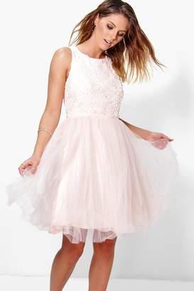 boohoo Boutique Ally Applique Top Mesh Skater Dress