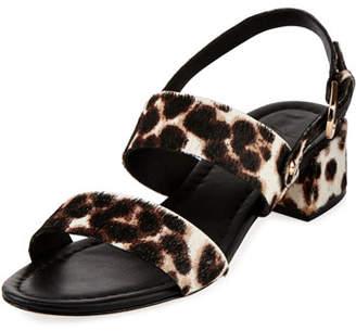 Joie Rach Calf Hair City Sandal, Snow Leopard