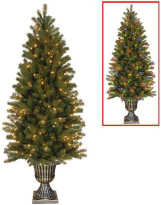 The Holiday Aisle Downswept Douglas 6' Green Fir Artificial Christmas Tree with 200 Dual Color LED Lights