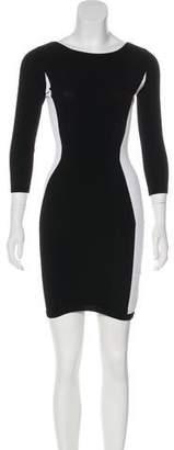Autumn Cashmere Colorblock Bodycon Dress