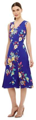 Phase Eight Blue Bellissa Floral Fit & Flare Dress