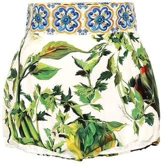 Dolce & Gabbana High-rise printed cotton shorts