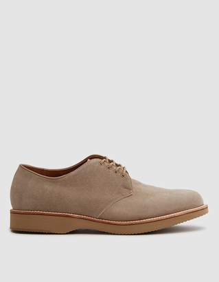 Alden Colonial Plain Toe Blucher