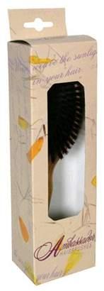 Ambassador Hairbrush