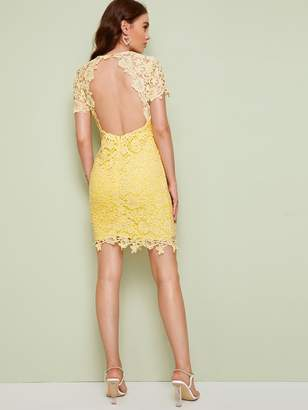 Shein Guipure Lace Overlay Pencil Dress