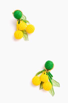 Sunseeker Petite Cluster Earrings