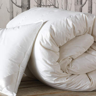 Wayfair Loughlin Lightweight Down Comforter