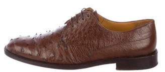 Mezlan Ostrich Derby Shoes
