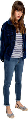 Max Studio indigo velvet jacket