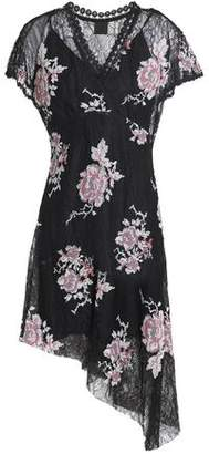 Anna Sui Asymmetric Embroidered Lace Mini Dress