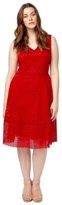 Studio 8 Sizes 12-26 Red Bailey Dress
