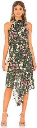 Parker Julieta Dress