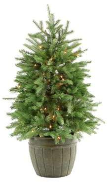 clear Fraser Hill Farms 4-Ft. Potted Pine Tree with Lights