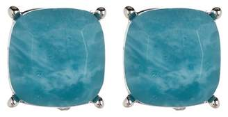 Vince Camuto 10mm Turquoise Stud Earrings