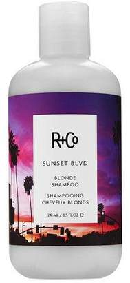 R+Co SUNSET BLVD Blonde Shampoo, 8.5 oz. $29 thestylecure.com