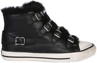 Ash Valko 02 Sneaker