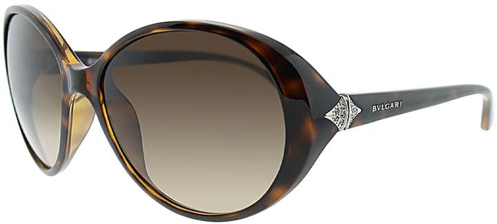 CelineBrown Tortoise Oversize Sunglasses
