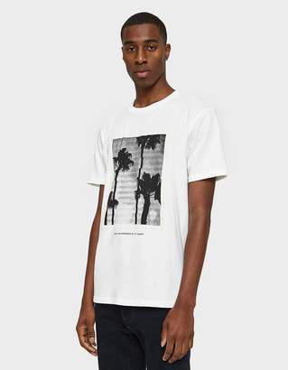 Need Palm Printed T-Shirt