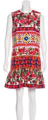Dolce & Gabbana 2017 Mambo Rose Shift Dress