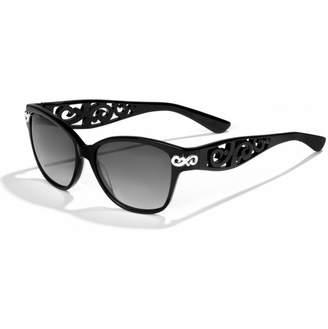 Brighton Contempo Chic Sunglasses