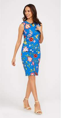 J.Mclaughlin Belinda Dress in Butterfly Garden
